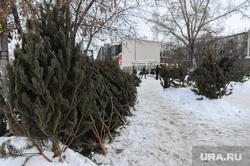 Рейд по местам несанкционированной торговли елками. Челябинск, елки, елочный базар, торговля елками