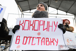 Пикет команды Навального. Курган, плакат, альянс врачей