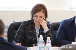 Визит врио губернатора Курганской области Шумкова Вадима в Шадринск, кокорина лариса