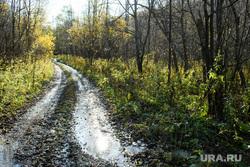 Виды Челябинской области, лесная дорога