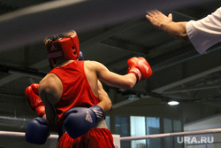 Первенство России по боксу среди юниоров Курган, бокс