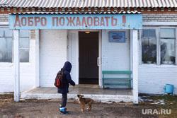 Школа. Курган, собака, сельская школа, школа, село, ребенок, собака  шпонка