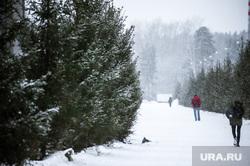 Виды Екатеринбурга, снег, зима, парк, елки, виды екатеринбурга
