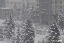 Снегопад. Челябинск, зима, снегопад, буран, метель, климат, погода