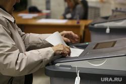 Выборы в Тюмени. Тюмень, коиб, выборы, бюллетени, избирательный участок, голосование