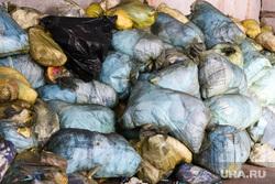 Крематорий. Оцепление. Курган , мусор, отходы, мусор в мешках, свалка мусора, мусор в пакетах, медецинские отходы