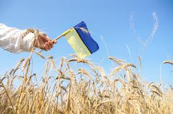 Клипарт depositphotos.com , поле, флаг украины, украинский патриот