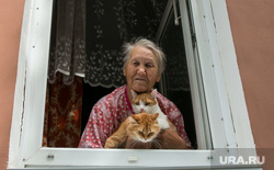 Клипарт, разное. Курган, пенсионер, кошки, старость, домашние животные, пожилая женщина, окно