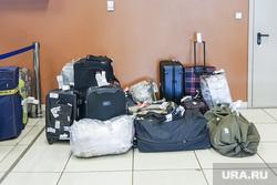 Выдача багажа в Международном аэропорту «Кольцово». Екатеринбург, аэропорт, кольцово, чемоданы, туризм, сумки, путешествия, розыск багажа, утерянный багаж, путешествие