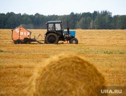 Начало уборочной кампании. Сельхозугодья Белоярского района. Екатеринбург, трактор, поле, сено, заготовка корма