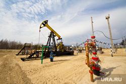 Роснефть. Нижневартовск , роснефть, качалка, куст, нефть, добыча нефти