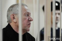 Продление меры пресечения Евгению Тефтелеву в Центральном суде. Челябинск, решетка, клетка, тефтелев евгений