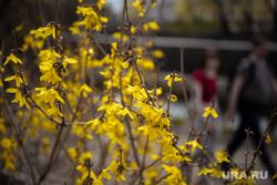 Виды города. Екатеринбург, весна