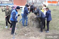 Визит врио губернатора Шумкова в Звериноголовский район Курган, субботник, ученики школы