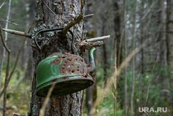 Виды Катав-Ивановска. Челябинская область, мишень, лес, дерево, чайник