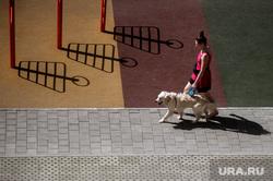 Повседневная жизнь горожан во время режима самоизоляции. Екатеринбург, собака, прогулка с собакой, жилой комплекс, самоизоляция, жилой комплекс светлый, пандемия коронавируса