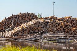 Путевые фото. Нижний Тагил -Восточный - Верхотурье - Гари, деревья, лесопилка, лесоматериалы, лесоповал, пилорама, дрова