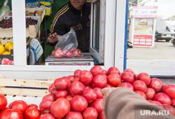Клипарт. Магнитогорск, овощи, торговля, продукты, рынок, еда, торговец