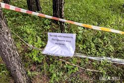 Незаконная вырубка леса в коттеджном поселке «Рассоха». Екатеринбург, лес, бревна, вырубка
