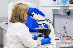 Открытие второго корпуса клиники УГМК-Здоровье. Екатеринбург, микроскоп, исследование, медицинское учреждение, изучение