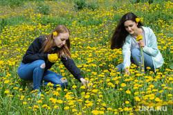 Челябинск. Жизнь горожан, одуванчики, лето, девушки, цветы, весна, полянка, молодежь