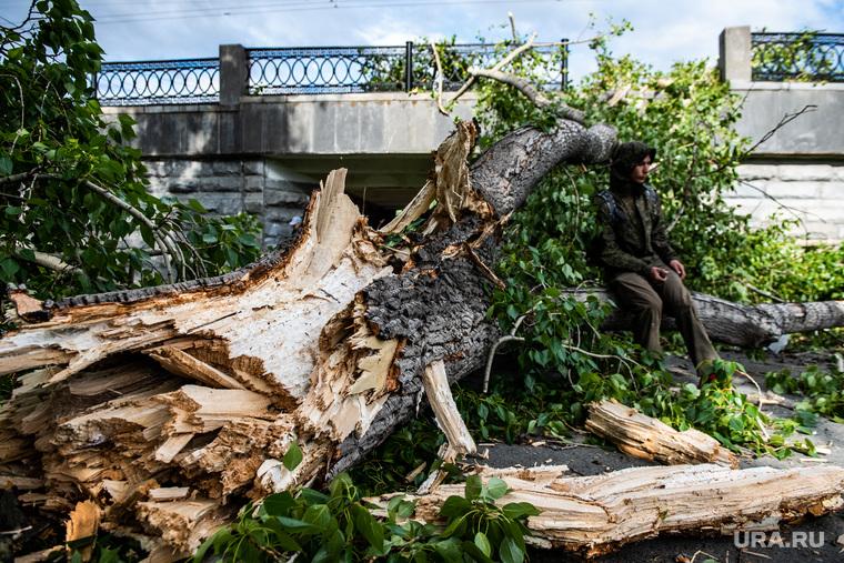 Последствия урагана в городе. Екатеринбург