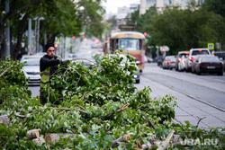 Последствия урагана в Екатеринбурге, улица куйбышева, сломанные деревья, коммунальные службы, екатеринбург , ураган, циклон, последствия урагана