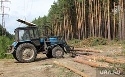 Вырубка леса КГСХА Курганская область, трактор, вырубка леса, укладка деревьев