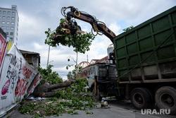 Последствия урагана в Екатеринбурге, улица куйбышева, деревья, сломанные деревья, коммунальные службы, екатеринбург , ураган, циклон, последствия урагана