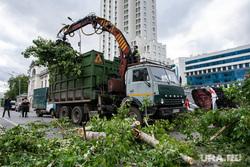 Последствия урагана в Екатеринбурге, улица куйбышева, сломанные деревья, коммунальные службы, ураган, циклон, последствия урагана