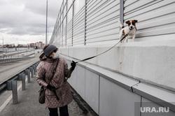 Город во время самоизоляции. Тюмень, человек в маске, прогулка с собакой, выгуливает собаку