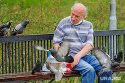 Обстановка в городе во время эпидемии коронавируса. Челябинск, пенсионер, дед, пожилой человек, голуби