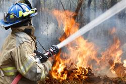 Клипарт depositphotos.com, пламя, дым в лесу, лесные пожары, огонь, пожар, тушение пожара, пожарник, пожарный, природа, экология