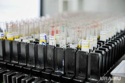 Лаборатория диагностики инфекционных заболеваний. Челябинск, заражение, лаборатория, пробирки, препараты, эпидемия, анализ, инфекция, коронавирус, covid, ковид