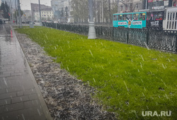 Майский снегопад. Екатеринбург, снег, снегопад, трава, зеленый газон, плохая погода, мокрый снег, весна