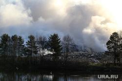 Лесные пожары. Курган, лесной пожар, шуховский полигон