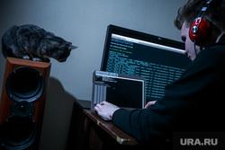 Хакер, IT (иллюстрации), кот, програмист, музыкальные колонки, компьютер, хакер, компьютерные сети