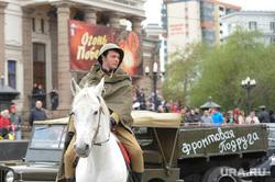 Генеральная репетиция парада. Челябинск., лошадь, всадник, фронтовая подруга