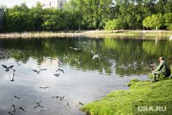 Виды Тюмени. Тюмень , рыбак, пруд, водоем, рыбалка, голуби, весна, май