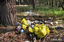 Осенняя природа, разное Курган, мусор в лесу