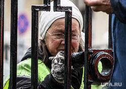 Покраска забора на проспекте Ленина. Екатеринбург, бабушка, благоустройство города, работа для пенсионеров, весенняя уборка, покраска забора, работающий пенсионер