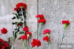 Митинг в честь памяти Владимира Ленина. Тюмень, траур, гвоздики, траурная церемония, цветы