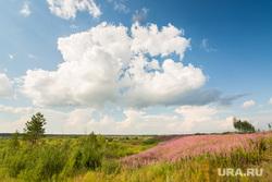 Природа ХМАО. Сургут, пейзаж, природа, облака, небо
