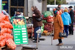 Пресс-конф Печериной об открытии овощной ярмарки, продовольствие, овощная ярмарка, рынок, еда