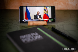 Онлайн-совещание Президента РФ Владимира Путина с главами субъектов Российской Федерации. Москва, лидеры россии, путин на экране
