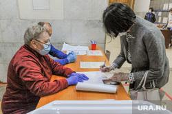 Котова Наталья на избирательном участке. Челябинск, котова наталья, избирательный участок, голосование по поправкам в конституцию