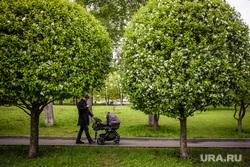 Виды Екатеринбурга, отец с ребенком, сквер на драме