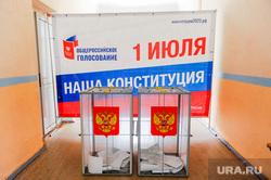 Общероссийское голосование. Челябинск, избирательный участок, голосование, урна для голосования