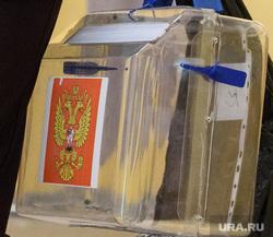 Голосование по поправкам в Конституцию РФ на УИК №1256. Екатеринбург, голосование на дому, выездное голосование, урна для голосования, переносная урна для голосования