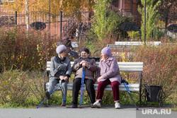 Клипарт. Курган, бабушки на скамейке, пенсия, пенсионерки на скамейке, палки для ходьбы